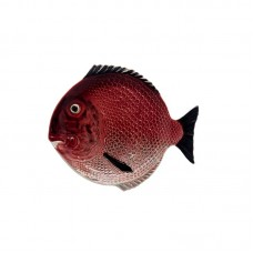 PLATE - 27,5 CM, FISH