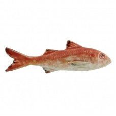 STRIPPED RED MULLET