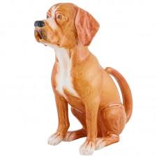 PITCHER DOG (PERDIGUEIRO)