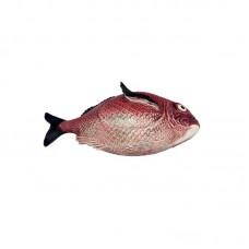 SOUP BOWL - 3,3 L, FISH