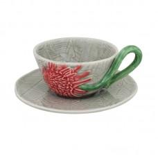 TEA CUP AND SAUCER, ETLINGERA